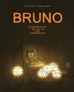 Catharina Valckx : Bruno. Quelques jours de ma vie très intéressante