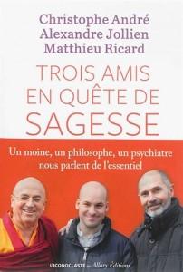 Christophe André : Trois amis en quête de sagesse : un psychiatre, un philosophe et un moine nous parlent de l'essentiel