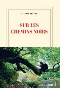 Sylvain Tesson : Sur les chemins noirs