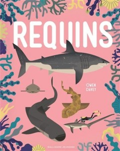 Owen Davey : Requins